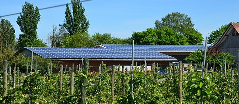 autoconsumo-fotovoltaico-en-granjas-y-explotaciones-agricolas