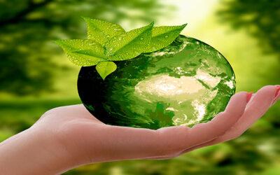 Día Mundial de la Educación Ambiental. Nuevos entornos para los líderes del futuro