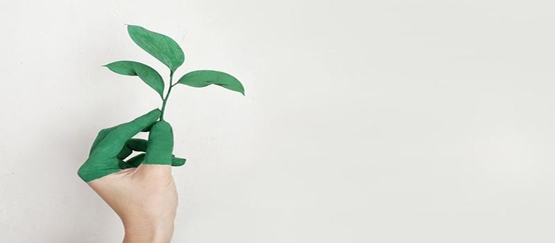 El Pacto Verde de la UE o Green Deal para combatir el cambio climático